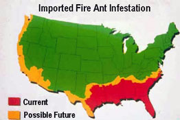 Fire Ant Map
